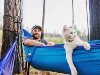 camping with cats 20