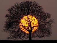 full moon főkép