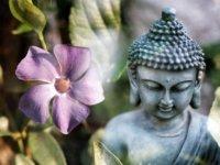 buddha-1277259_960_720